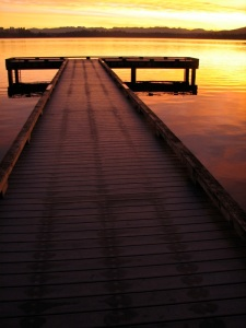 Leschi swim-dock